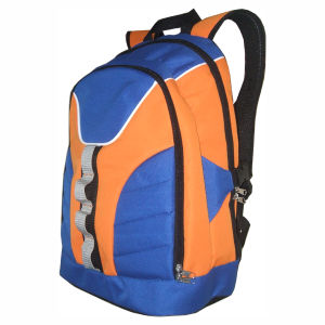 Sport Hiking Travel Backpack, College Student Backpack pictures & photos