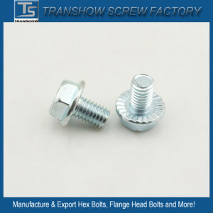 1/4X3/4 Unc China Produce Serrated Flange Screw pictures & photos
