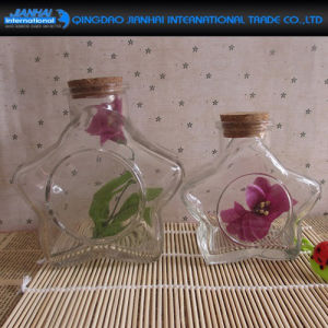 Two Size Glass Art for Decoration Wishing Glass Bottle pictures & photos