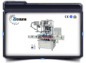 Screw Type Sealer Capper (Fxz) pictures & photos