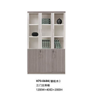 Commercial Office Furniture Office File Cabinet Modular Cabinet (H70-0684) pictures & photos