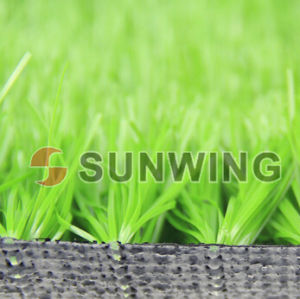 Soccer Football Field Synthetic Cheap Carpet Artificial Grass pictures & photos