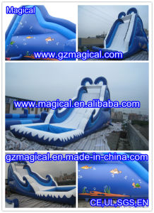 Customized Kids Adult PVC Pool Inflatable Water Slide (MIC-907) pictures & photos
