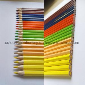 Wholesale Colour Pencil pictures & photos