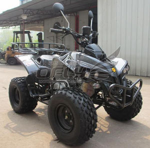 50cc/110cc/125cc Quad Bike pictures & photos