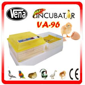 Capacity 264 Quail Eggs Incubator / Poultry Incubator Machine pictures & photos