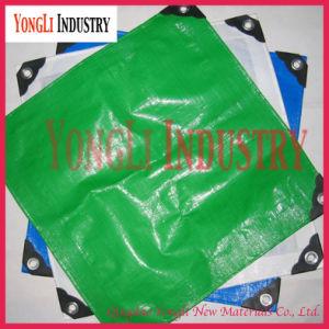 Waterproof PE Tarpaulin /Tarpaulin Rolls Sheet pictures & photos