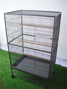 Prevue Hendryx Pet Products Wrought Iron Flight Cage Pet Cage Birdcage pictures & photos