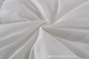 Emobssed Polycotton Fabric with Satin Piping Down Quilt pictures & photos