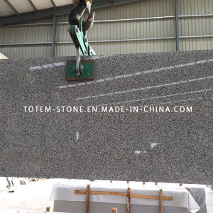 Natural G603 Grey White Granite Stone Slab for Countertop, Tombstone pictures & photos