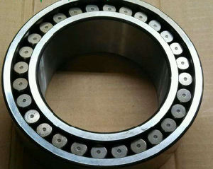 Nj204em Cylinderical Roller Bearing Brass Cage 20X47X14mm Ubc pictures & photos