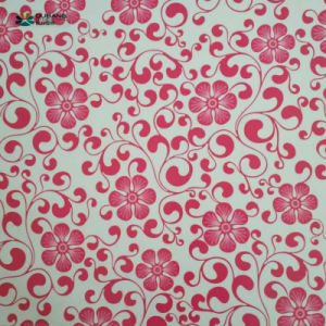 Decoration Material Prime Quality Pattern PPGI pictures & photos