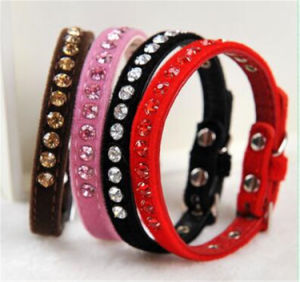 High Quality Dog Collar pictures & photos