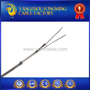 High Temp E Type Thermocouple Wire pictures & photos