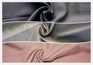 100% Nylon Taslon Dobby Twill Full/Dull Fabric (NDL-B716) pictures & photos