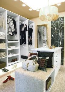 Plywood Walk in Closet Organizer (Walk in closet) (BF17) pictures & photos