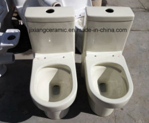 Ivory/Bone Ceramic One-Piece Toilet pictures & photos