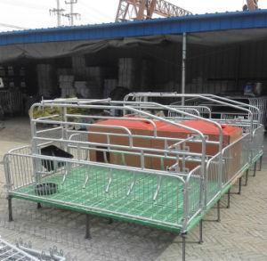 Poultry Equipment Pig Farm Design pictures & photos
