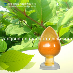 Natural Rhubarb Extract Emodin 98% pictures & photos