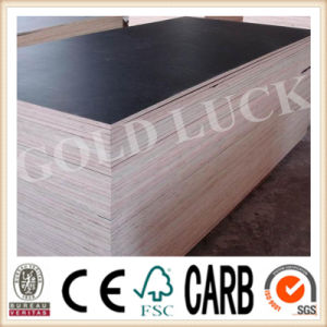 Qingdao Gold Luck Precast Facade Construction Film Faced Plywood (QDGL150116) pictures & photos