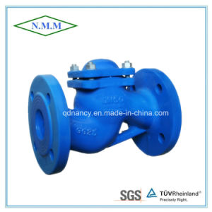 DIN Standard Cast Iron Flange End Lift Check Valve pictures & photos