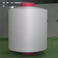 Polyester DTY Cationic Yarn 150d/144f, Br, RW pictures & photos