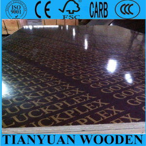 Film Faced Construction Formwork Plywood pictures & photos