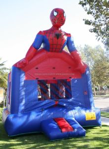 Inflatable Theme Castles, Bouncy Castles (B1002) pictures & photos