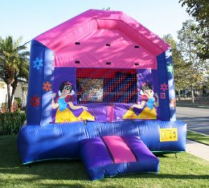 Girls Inflatable Bouncer, Jumping Castle (B1011) pictures & photos