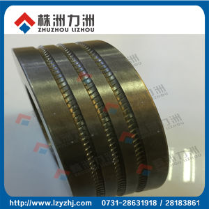 Tungsten Carbide Rolls for Steel Rolling Mill