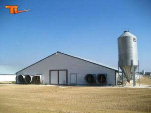 Prefabricated Steel Chicken Farm