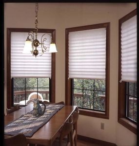 Temporary Polyester or Non-Woven Fabric Pleated Blinds pictures & photos