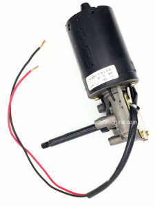 DC Motor Automobile Oil Pump Motor pictures & photos