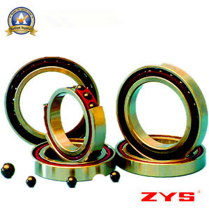China High Quality Manufacturer Zys Hybrid Ceramic Ball Bearings pictures & photos