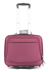 Simple Style 2 Wheels Trolley Case and Luggage Bag (ST7118) pictures & photos