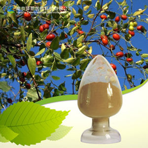 High Quality Natural Super Red Jujube Extract Jujube Polysaccharide pictures & photos