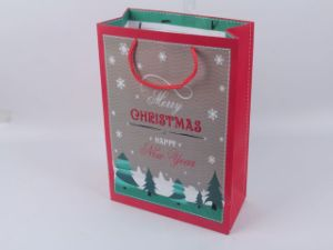 Promotional Christmas Handbag Ladies Paper Shopping Gift Bag pictures & photos