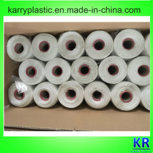 HDPE Carrier Bags Handle Plastic Bags with Core for Shopping pictures & photos