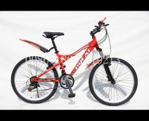 "24"" MTB Bike with Alloy Chainwheel& Crank (HC-MTB-2445) pictures & photos"