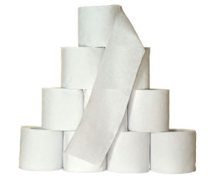 High Quality Toilet Tissue Paper pictures & photos