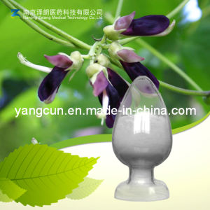 Natural Mucuna Cochinchinensis Extract 98% Levodopa pictures & photos