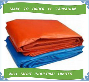 Made-to-Order Supply Type PE Tarpaulin pictures & photos