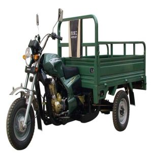 Tricycle (OD150ZH-A) pictures & photos
