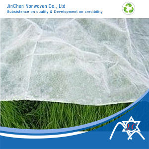 PP Nonwoven Fabric Agriculture Plant Cover pictures & photos