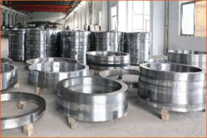 DIN Carbon Steel Flange pictures & photos