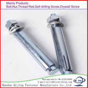 M6 M8 M10 M12 M14 M16 Carbon Steel Color Zinc Plated Expansion Anchor Bolt pictures & photos