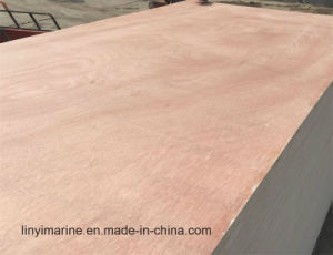 MR Glue Plywood Commercial Plywood for India Market pictures & photos