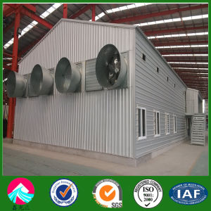 Prefabricated Poultry Chicken House Shed for Broiler/Layer Chicken House pictures & photos