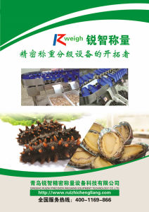 Sea Cucumber Weight Sorter Grader Food Machinery pictures & photos