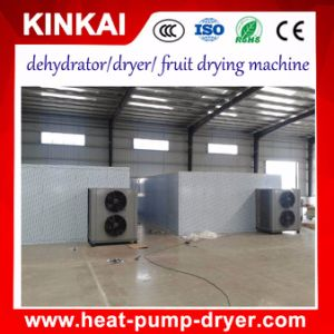 Hot Air Dryer/Vegetable Tray Type Drying Machine pictures & photos